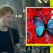 Ed Sheeran's 'Visiting Hours' claims the number one spot!